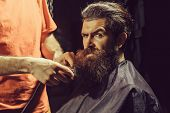 Handsome Bearded Man, Hipster, Brunette With Beard And Moustache Has Haircut Or Clippering In Hairdr poster