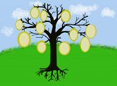 Tree with frames for text or pictures, great for family tree projects, jpeg illustration