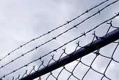 Barb wire against stormy sky