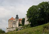 Castle In Ojcow