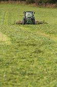 Tractor cutting the field of cow-grass