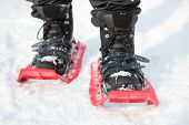 Snowshoes. Snowshoeing closeup. Red new modern high-end snowshoes. Man hiking in snow on snowy winte
