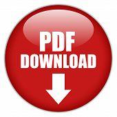Vector pdf download button