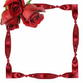 Red Roses On Framework From A Tape With Knots