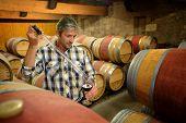 Enólogo obtener la muestra de vino tinto de barril