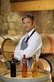 Wine waiter standing in wine cellar