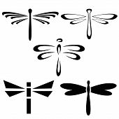picture of mica  - Set of silhouettes of black dragonflies on a white background - JPG