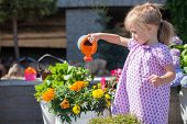 Little Nice Girl Watering Flowers With A Watering Can