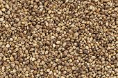 background of organic dried hemp seeds