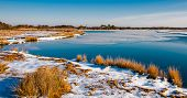 Cubierta de nieve Marsh en Assateague Island National Seashore, Maryland.