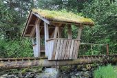 Troll Bridge at Petersburg Alaska Park