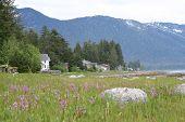 Southeastern Alaska Coastal Homes