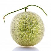 picture of muskmelon  - Rock Melon fruit - JPG