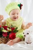 Joyful little girl in greenish clothes and hat sits on bedding near wicker basket with flowers and lying white chihuahua