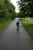 Boy Going Away On Bicycle