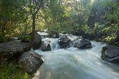 River Dulce Stream In Guadalajara, Spain
