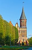 Koenigsberg Cathedral - Gothic Temple Of The 14Th Century. Kaliningrad (until 1946 Koenigsberg)