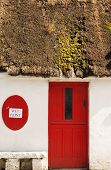picture of quaint  - quaint building front with a thatched roof and a red door in Ireland - JPG