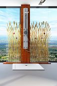pic of cattail  - Awesome nature style bathroom interior with shower cubicle - JPG
