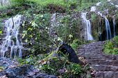 stock photo of swabian  - The waterfall of Bad Urach Swabian Alb Baden-Wuerttemberg