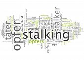 Word Cloud - Stalker