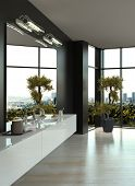 picture of penthouse  - Modern black and white bathroom interior - JPG