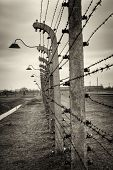 image of nazi  - Nazi Concentration Camp Auschwitz Birkenau - JPG