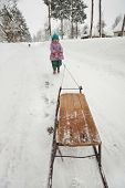 Little girl in pink jacket pulling sled on the snow