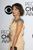 LOS ANGELES - JAN 8:  Ming-Na Wen at the People's Choice Awards 2014 Arrivals at Nokia Theater at LA