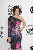 LOS ANGELES - JAN 8:  Lucy Hale at the People's Choice Awards 2014 Arrivals at Nokia Theater at LA L