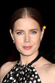 PALM SPRINGS - JAN 4:  Amy Adams at the Palm Springs Film Festival Gala at Palm Springs Convention C