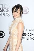 LOS ANGELES - JAN 8:  Ashley Rickards at the People's Choice Awards 2014 Arrivals at Nokia Theater a