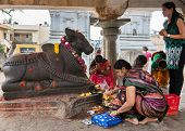 Worshiping Nandi At Sri Naheshwara In Bangalore.