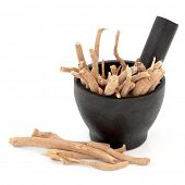 Ginseng herbal medicine in a mortar with pestle over white background.
