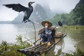 stock photo of fishermen  - Cormorant fisherman and his bird on the Li River in Yangshuo - JPG