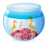Illustration of a jar with three seahorses on a white background