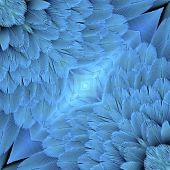 Close Up Of Blue And Gold Macaw Bird Feathers In Nice Background Patterns