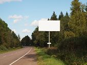 blank billboard on empty road passing through the forest.