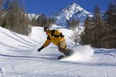Yellow Snowboarder