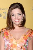 LOS ANGELES - JUN 11:  Jen Lilley at the Women In Film 2014 Crystal + Lucy Awards at Century Plaza H