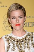 LOS ANGELES - JUN 11:  Kathleen Robertson at the Women In Film 2014 Crystal + Lucy Awards at Century