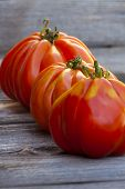 Three Large Beefsteak Tomatoes In A Row