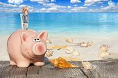 Piggy Bank Savings Für Vacation