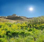 Mountains Shalkar-nura