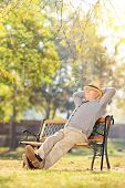 Elderly gentleman sitting on a bench in park on a sunny day