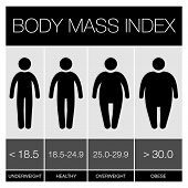stock photo of caress  - Body Mass Index graphic Icons Vector illustration - JPG
