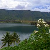 Lake Toba View