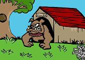 Bull dog home