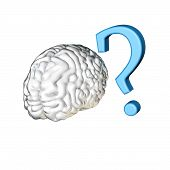 Question Mark Brain