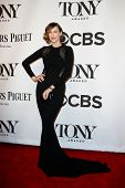 NEW YORK-JUNE 8: Actress Vera Farmiga attends American Theatre Wing's 68th Annual Tony Awards at Rad